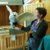 Young Naturalists registration open for children age 6-11