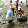 MVFN Young Naturalist Program for Ages 6-11