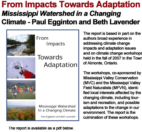 From Impacts towards Adaptation header