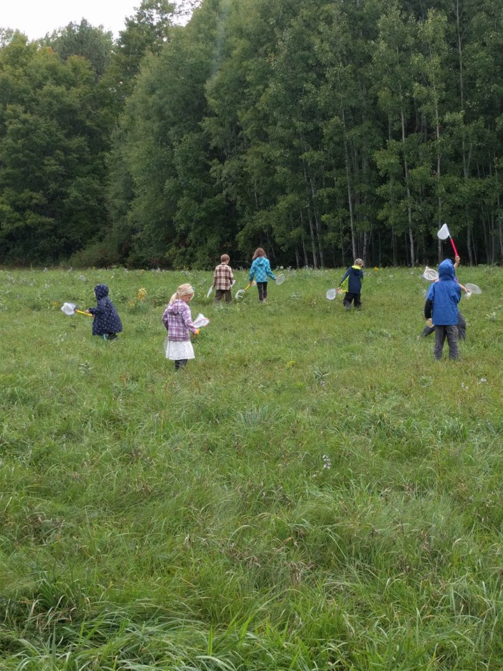 Young Naturalists a
